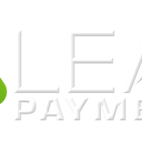 LeapPayments WHITE PNG Logo